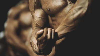 Articles Image Best Steroids for Mass Gain
